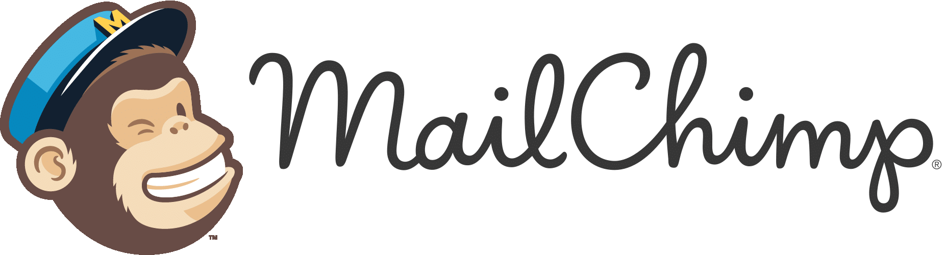 Mailchimp email marketing setup with shopify penguin e for Mailchimp ecommerce templates